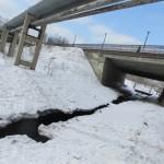 В Североуральске из-подо льда спасли собаку