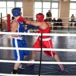 Боксерский турнир прошел в Североуральске