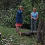 В Североуральске пилят тополя и... яблони
