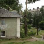 Рабочие, спилившие тополь, разбили окно в жилом доме Североуральска