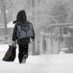 В Североуральске с понедельника заработают школы и детские сады