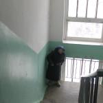 Североуральская пенсионерка Тамбовцева обвиняет собачницу Павлову в обмане. Версия Павловой (аудио)