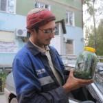 Гадюки доползли до Североуральска. Одну красавицу грибник поймал в районе аэропорта (Видео)
