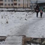 Третий Северный - картина дня: в остановке - мусор, на мостиках - гололед, коровы обедают на помойке (фото, видео)