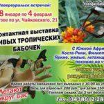 Хотите посетить выставку тропических бабочек бесплатно? Ответьте на вопросы - и получите билет!