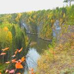 Североуральцев приглашают принять участие в акции «День посадки леса»