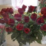 Букеты от главы. Администрация Североуральска закупает цветы за счет горожан. Обсудим?