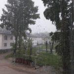 Жители Черемухово просят спилить тополя