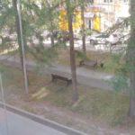 В Североуральске на улице Мира ночью стреляли?